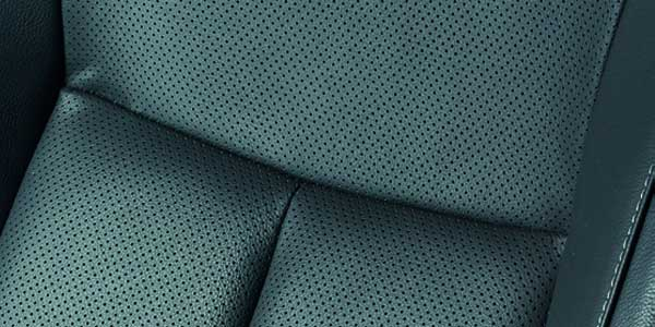 Leather Trim